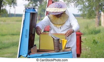 Beekeeper working in his apiary