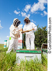 Beekeepers Working At Apiary