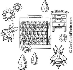 Beekeeping and apiary sketched objects