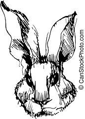 beeld, konijn, lange oren