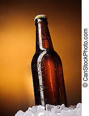 Beer - Bottle of beer