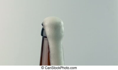Beer Bottle Opened And Froth Comes Out - Closeup of beer...