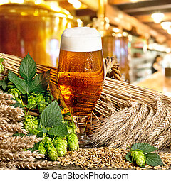 beer glass - glass of beer with barley and hop cones