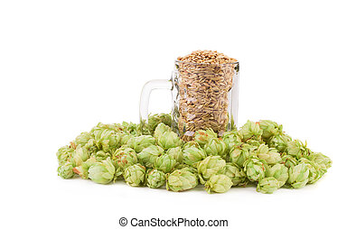 Beer goblet with hop. Isolated on a white background.