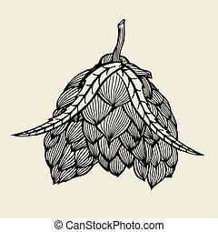 Beer hop illustration