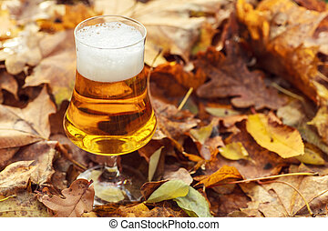 Beer in autumn forest - Glass of light beer on a forest ...