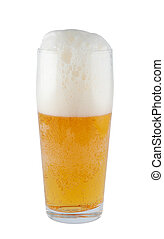 Beer in glass isolated on white background, clipping path.