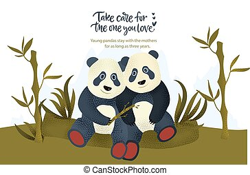 beer, kaart, style., dier, panda, plat