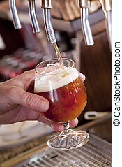 Beer on tap - Brewer fills a glass with beer on tap