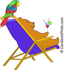 beer, papegaai, teddy