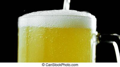Close-up of beer poured in beer mug against black background. Bubbles and foam in beer mug. 4k