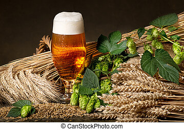 beer with hops and barley - beer glass and raw material for...