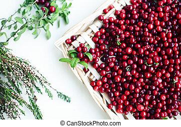 beeren, lingonberry, schließen, roh, herbst, tisch, auf