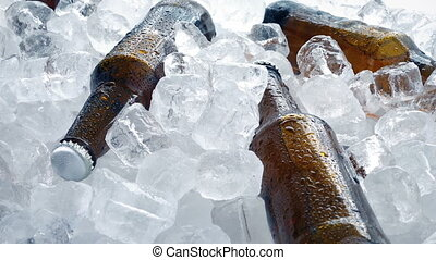 Beers In Ice Cubes Rotating