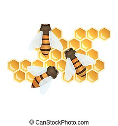 Bees and honey combs