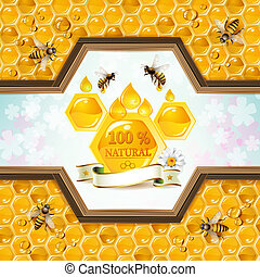 Bees and honeycombs - Wood frame with honeycombs