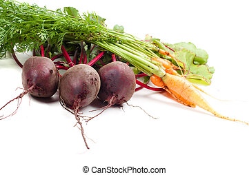 Beet and carrot - Shot of young beet and carrot isolated on...