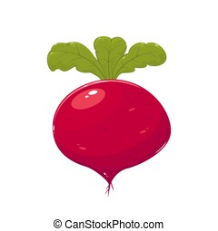 Beet - Delicious ripe beet isolated on white background,...