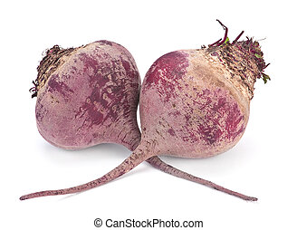 Beet root vegetable