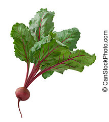 Beet isolated on a white background
