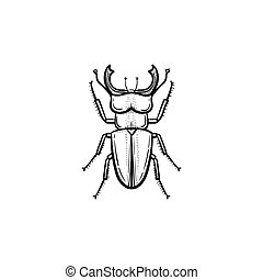 Beetle hand drawn sketch icon.