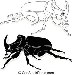Beetle. Hand drawn sketch.