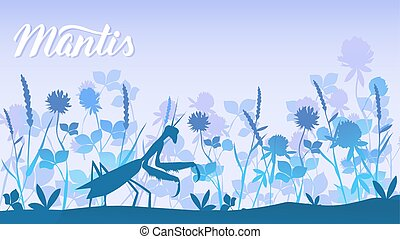 Beetle mantis among the grass background. Life of insects in the wild illustration. Beauty macro world design
