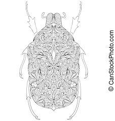 beetle on white background - Vector illustration of beetle...