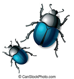 Beetle - Vector illustration of a beetle