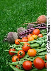 beetroot, cucamelons, gele, opgestapelde, rode bonen, tomaten