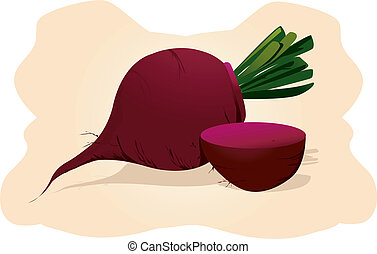 Illustration of two beetroots with it's leaves