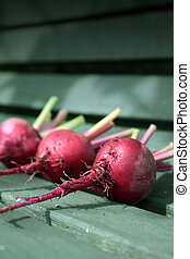 Beetroot on Bench