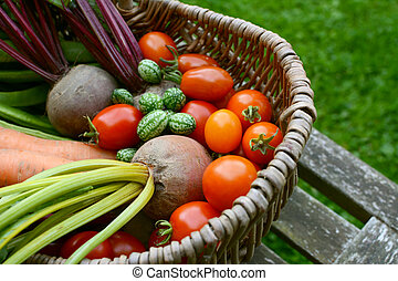 Beetroot, tomatoes, cucamelons and carrots in a wicker basket