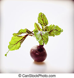 beetroot with leafs