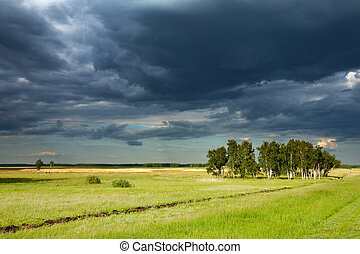 Before the storm - Landscape with green field and storm...