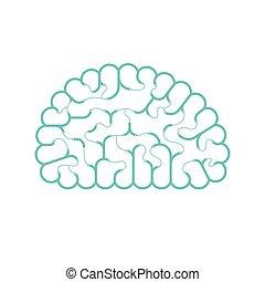 begrepp, 10, tråd, elektrisk, kabel, färg, utrymme, isolerat, illustration, eps, hjärna, vektor, grön, koppla samman, bakgrund, design, vit, avskrift