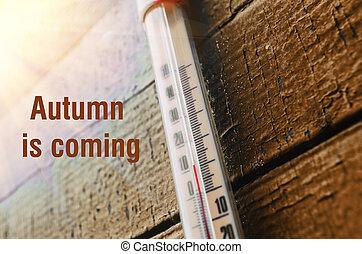 Trä vägg, termometer. Trä vägg, utomhus, gammal, termometer.
