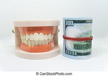begrepp, modell, dyrt, oss, kosta, eller, health., dollar., vit, insurance., dental, bakgrund, tandläkekonst
