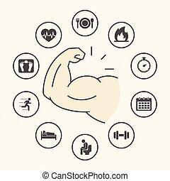 begriff, gerundet, verlust, gewicht, heiligenbilder, einfache , set., begriff, strategien, lebensstil, fettleibigkeit, gesunde