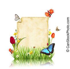 begriff, von, fruehjahr, mit, leer, papier, für, text., freigestellt, weiß, hintergrund