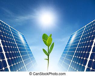 begriff, von, sonnenkollektoren, panel., grün, energy.