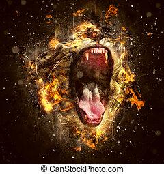 begrifflich, löwe, porträt