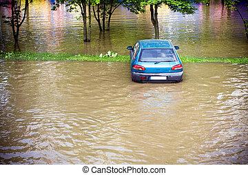 behøve, oversvømme, forsikring, foran