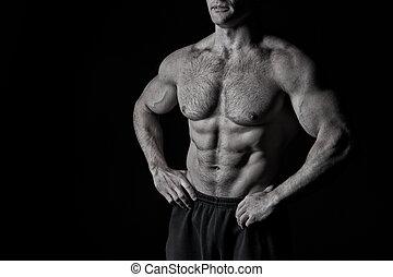 behaarde , workout, gespierd, borst, sexy, mannelijke , torso, man