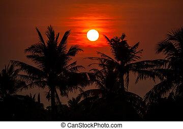 Behide sunset in Thailand