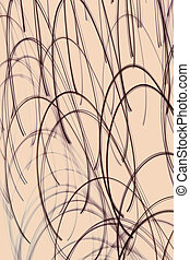 Beige abstract background with curved lines.