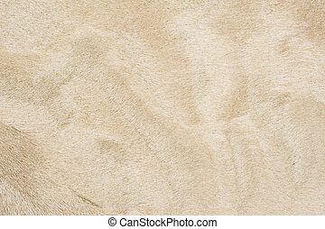 Beige color fur texture of background material
