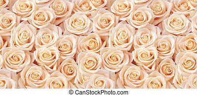 Beige roses seamless pattern