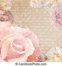 beige, scheda, rose, vendemmia, colori, rosa