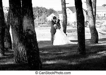beijando, noivinhos, floresta lago